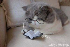 武汉师学思大教育科技_非师范生应该如何考教师资格证